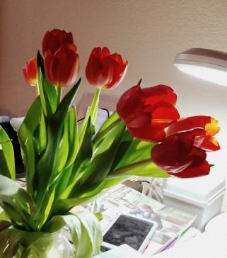 PicsArt_10-27-03.17.18.jpg